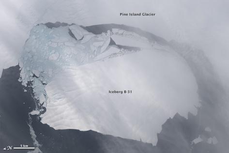 Détachement d'un iceberg au glacier de l'Ile du Pin (Antarctique)