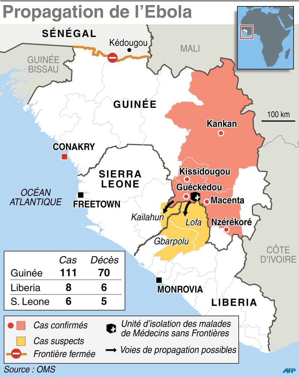 Infographie Fièvre Ebola - Sciences et Avenir